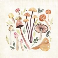 Fungi Field Trip III Fine Art Print