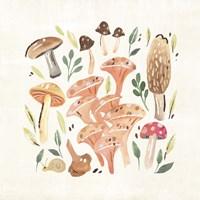 Fungi Field Trip IV Fine Art Print