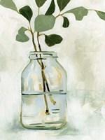 Eucalyptus Branch Still Life II Framed Print