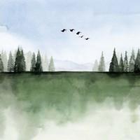Forest's Edge I Framed Print