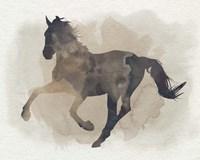 Galloping II Framed Print