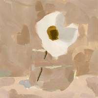 Canary Island Marguerite I Framed Print