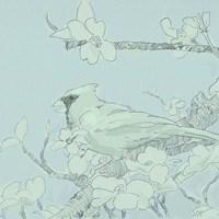 Backyard Bird Sketch II Framed Print