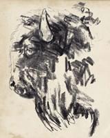 Bison Head Gesture II Framed Print