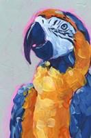 Pop Art Parrot I Framed Print