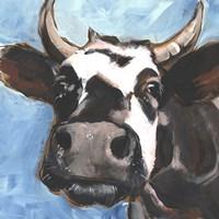 Cattle Close-up II Framed Print