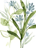Meadow Blues III Framed Print