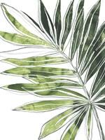 Expressive Palm IV Framed Print