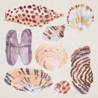 Ocean Sounds IV Framed Print