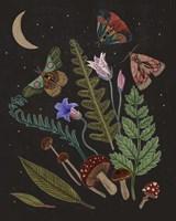 Dark Forest III Framed Print