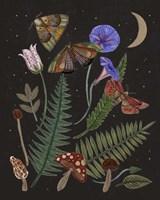 Dark Forest IV Fine Art Print