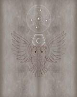 The Mystics V Framed Print