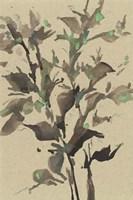 Leaves on Taupe II Framed Print