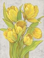 Yellow Tulips II Fine Art Print