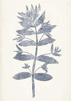 Navy Botanicals III Framed Print