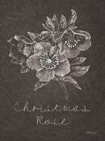 Black and White Chalkboard Christmas III Framed Print