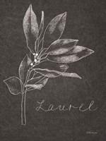 Black and White Chalkboard Christmas I Framed Print