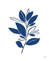 Bay Leaves Blue II Framed Print