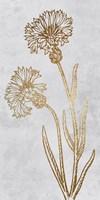 Golden Reach Framed Print