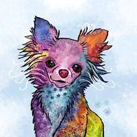 Colorful Pets I Fine Art Print