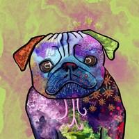 Colorful Pets III Fine Art Print