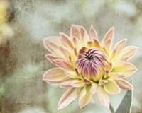Impression Flower Fine Art Print