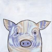 Paint Splotch Pig Fine Art Print