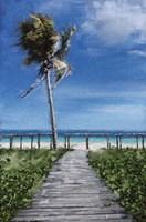 Beach Shore X Fine Art Print