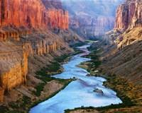 Mile 52 Colorado River Fine Art Print