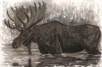 Majestic Moose Fine Art Print