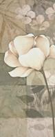 Soft Spa Floral I Framed Print