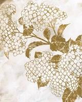 Brass Beauty 2 Framed Print