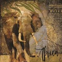 Taste of Africa Elephant Framed Print