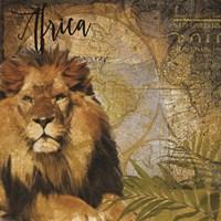 Taste of Africa Lion Framed Print