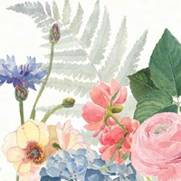 Boho Bouquet  IX Framed Print