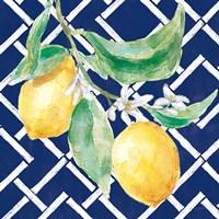 Everyday Chinoiserie Lemons I Framed Print