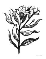 Ink Flower I Framed Print