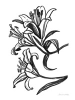 Ink Lilies II Framed Print