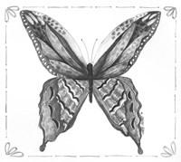 Butterfly VIII Framed Print