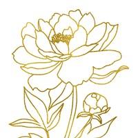 Gold Floral IV Framed Print