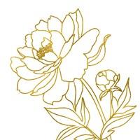 Gold Floral V Framed Print