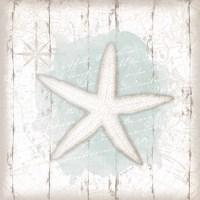 Calming Coastal Starfish Framed Print