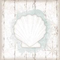 Calming Coastal Shell II Framed Print