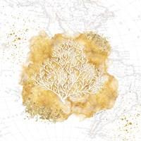 Golden Coral Framed Print