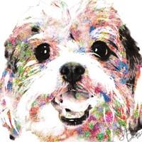 Cookie Fine Art Print