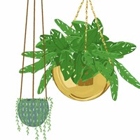 Hanging Plant Set Fine Art Print