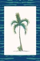 Tropical Palms I Framed Print