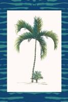 Tropical Palms II Framed Print