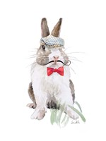 Modern Bunny III Framed Print
