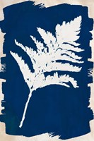 White Leaf on Navy I Framed Print